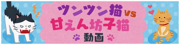 ツンツン猫 vs 甘えん坊子猫 動画