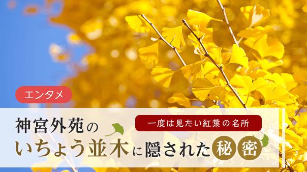 一度は見たい紅葉の名所神宮外苑のいちょう並木に隠された秘密