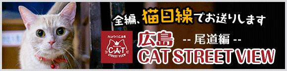 全編、猫目線でお送りします 広島CAT STREET VIEW -- 尾道編 --