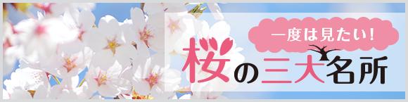 一度は見たい!桜の三大名所