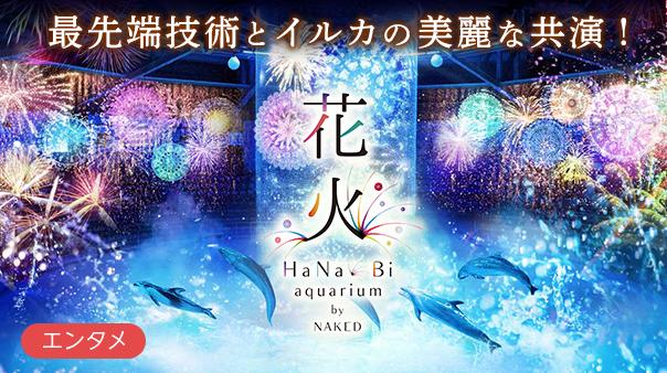 最先端技術とイルカの美麗な共演!花火アクアリウム by NAKED
