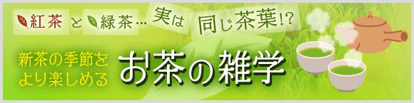 緑茶と紅茶…実は同じ茶葉!?新茶の季節をより楽しめるお茶の雑学