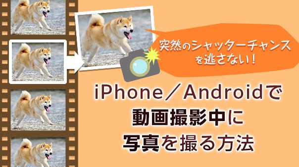 突然のシャッターチャンスを逃さない!iPhone/Androidで動画撮影中に写真を撮る方法