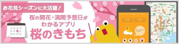 お花見シーズンに大活躍!桜の開花・満開予想日がわかるアプリ「桜のきもち」