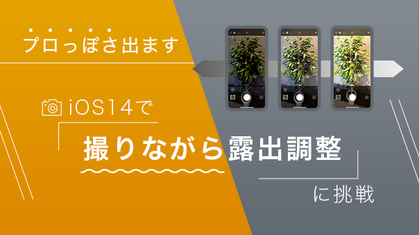 プロっぽさ出ます iOS14で「撮りながら露出調整」に挑戦