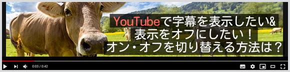 YouTubeで字幕を表示したい&表示をオフにしたい! オン・オフを切り替える方法は?